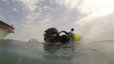 Dariush Hotel Diving Site