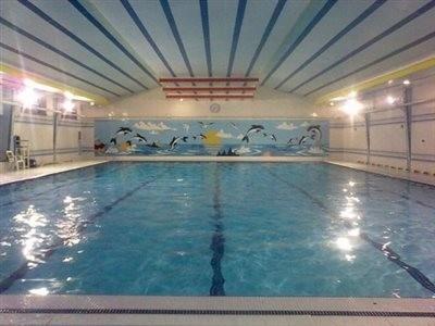 Arian Pool
