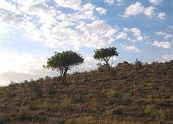 Khojir National Park