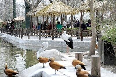 پارک ناژوان