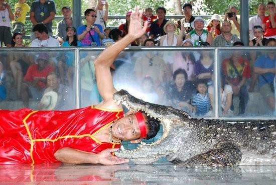 Million Years Stone Park & Pattaya Crocodile Farm