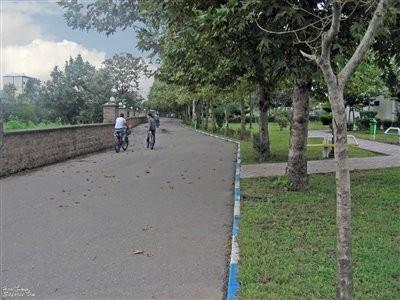 Tohid Park