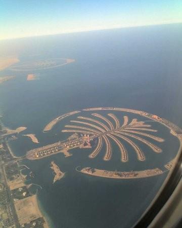 جزیره نخل جمیرا