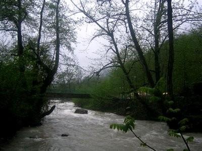 Chaldarreh Forest Park