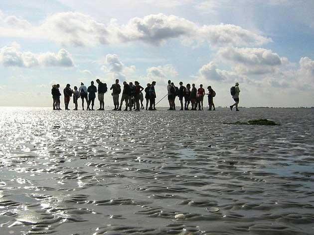 پیاده روی روی دریای وادن