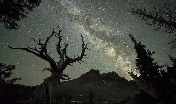 تصاویری خارق العاده از شب های پرستاره نوادا 