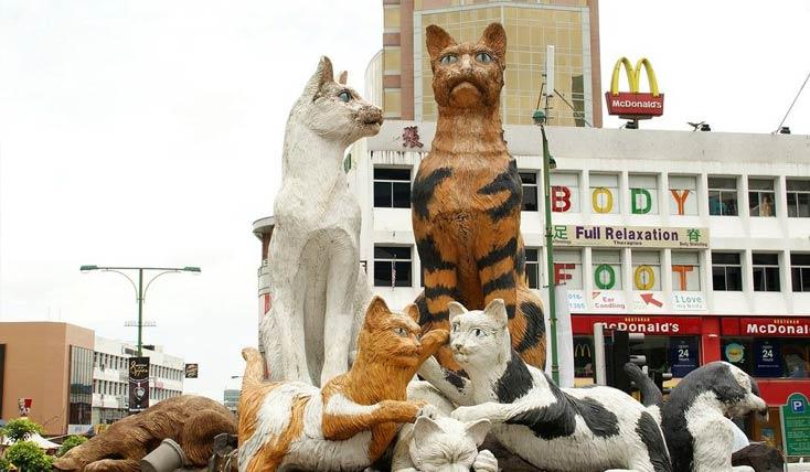 «کوچینگ» شهری که از در و دیوار آن گربه می بارد!