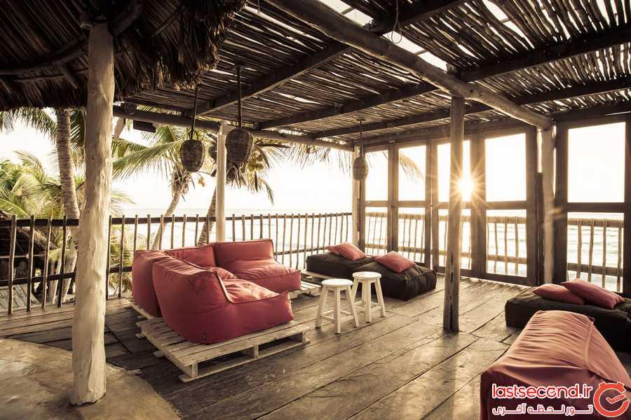 اقامتی عجیب و هیجان انگیز در  هتل درختی