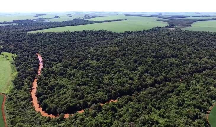 حقایق جالب و خواندنی درباره پاراگوئه 