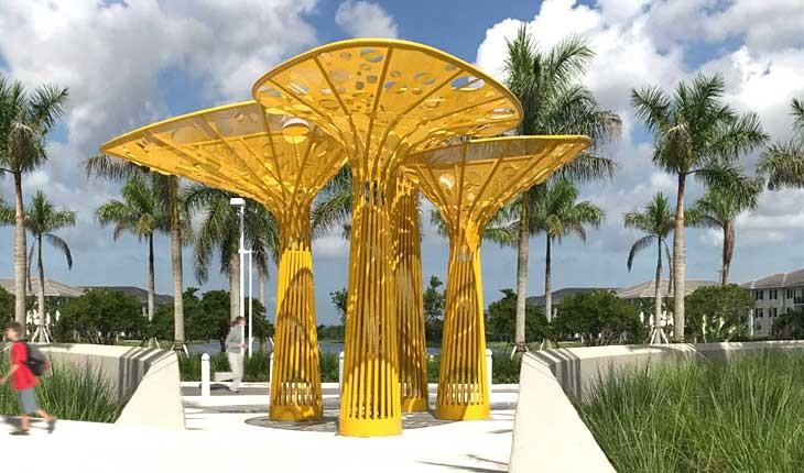 درختان طلایی در فلوریدا