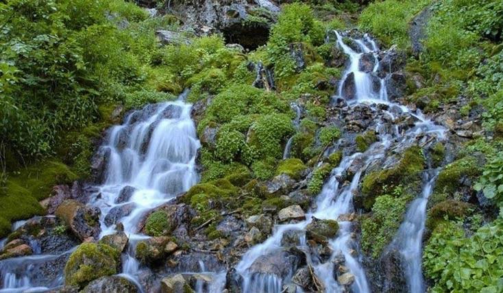 چشمه ریتمیک، پدیده ای نادر و شگفت انگیز 