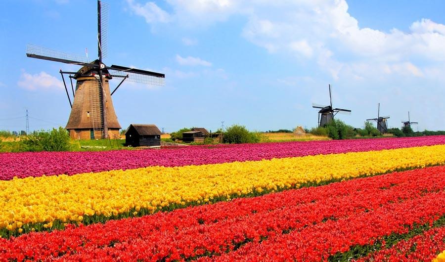 حقایق جالب و خواندنی درباره هلند