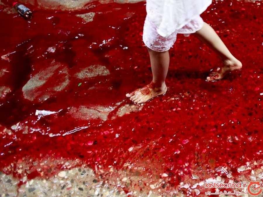 در بنگلادش، رودخانه های خون جریان دارد!