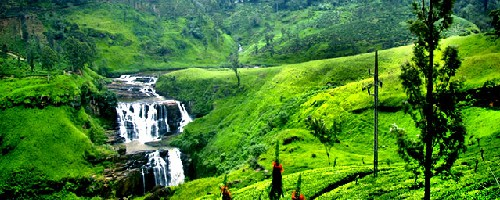 تور سریلانکا 4 بهمن 98