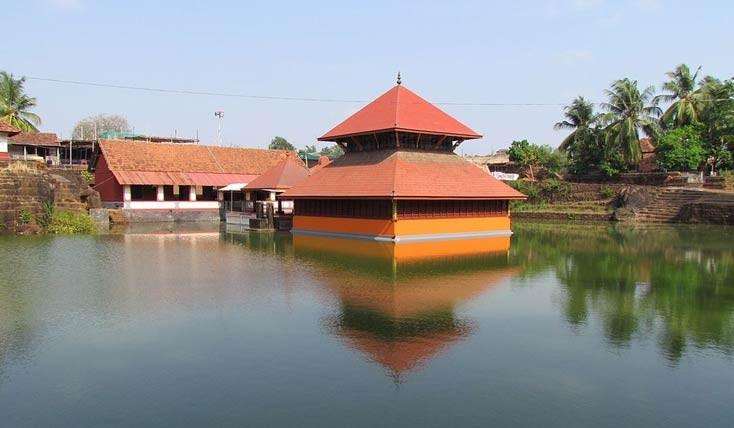 کروکودیل گیاهخوار، نگهبان معبدی در هند