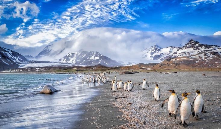 تصاویری بینظیر از «قطب جنوب» و شگفتی هایش