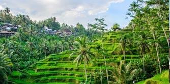 بالی بهشت خدا بر روی زمین ( قسمت اول - ابود )