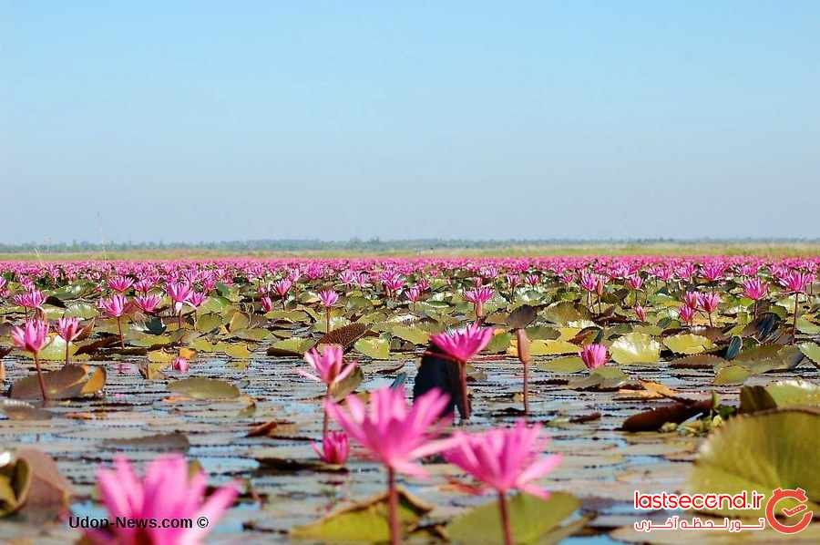 10 جاذبه عجیب در تایلند که کمتری کسی از آنها بازدید می کند
