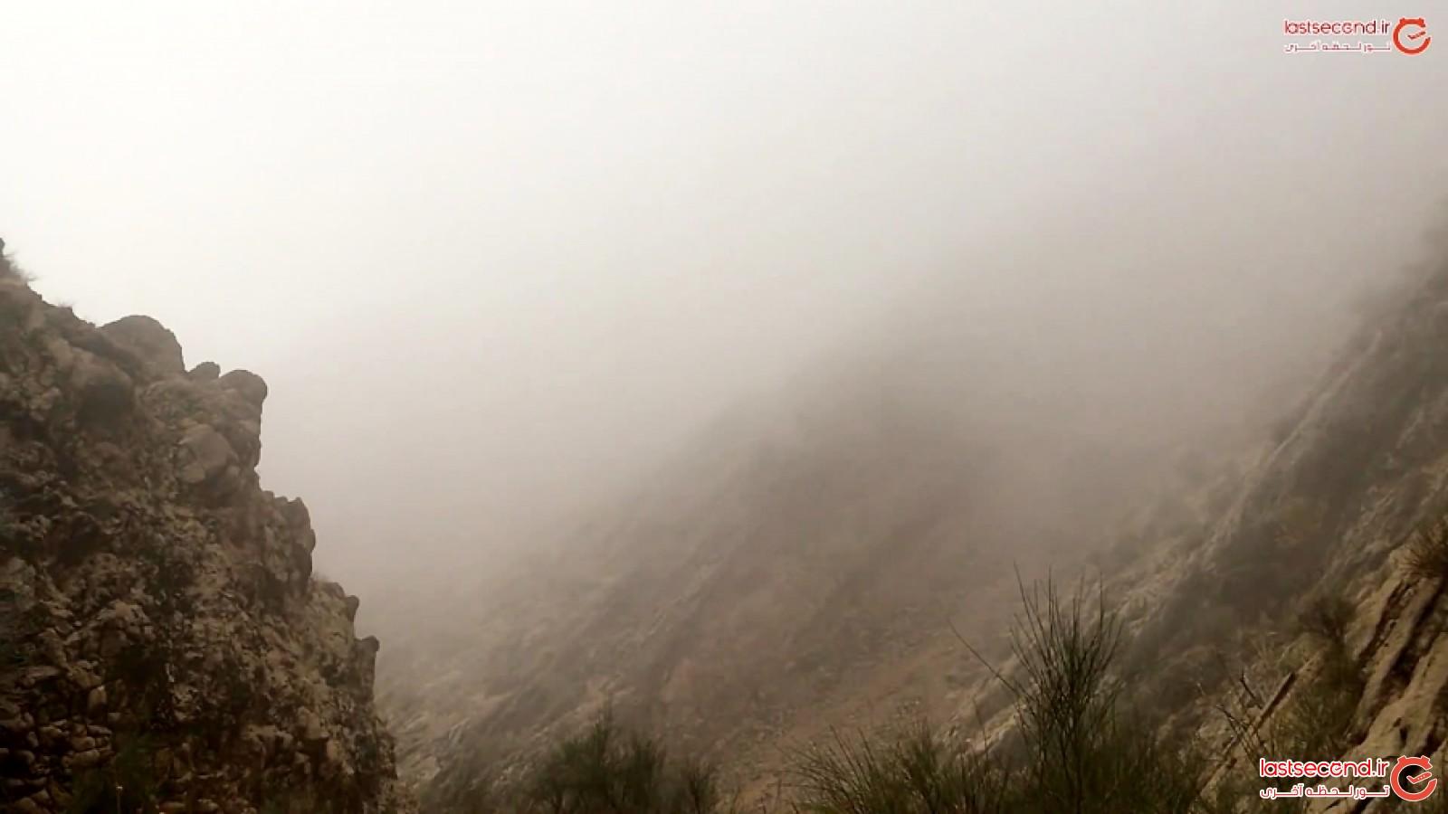 کوه دراک محصور در مه