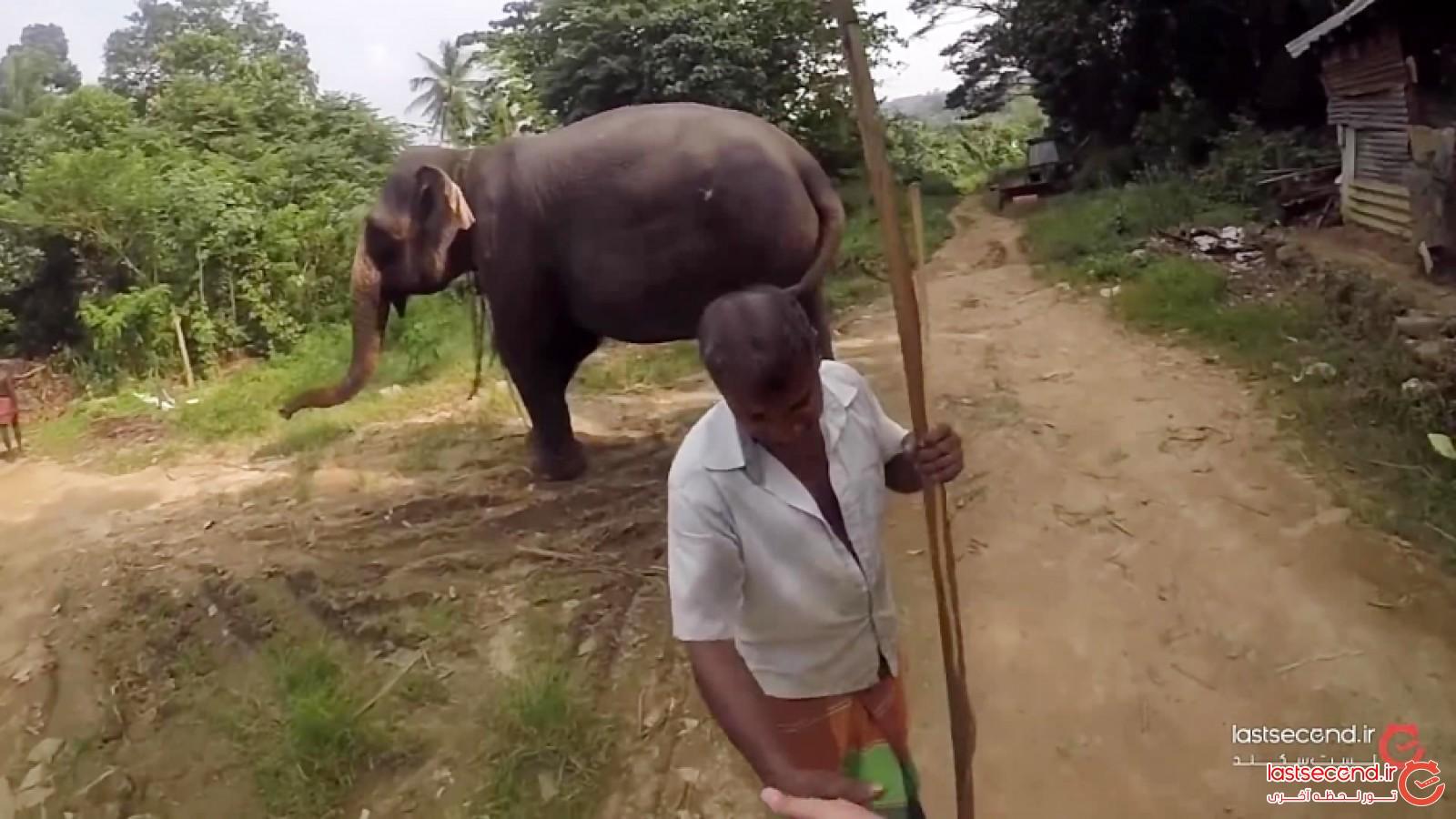 سفر به جزیره جادوئی سریلانکا
