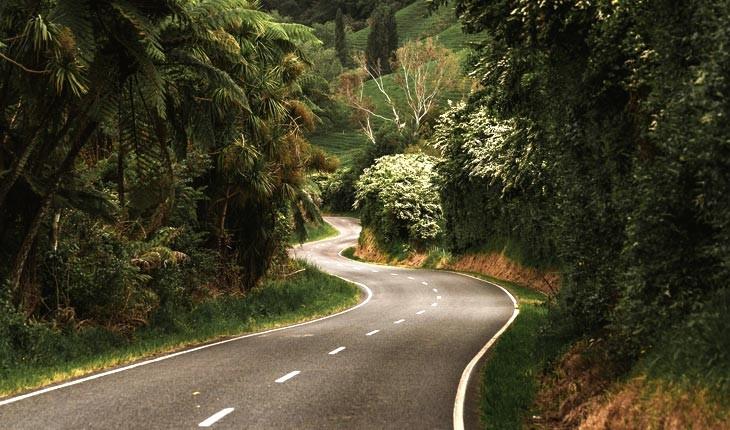 با 10 شهر کوچک و جذاب در نیوزیلند آشنا شوید