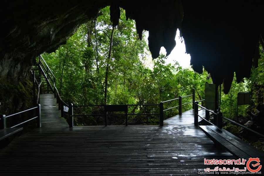 پارک ملی گونونگ مولو ، جاذبه ای خارق العاده در مالزی که نمی شناسید