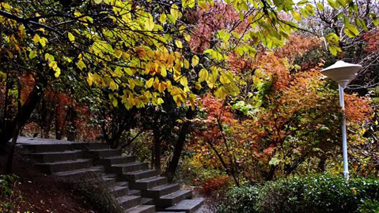 باغ سنگی جمشیدیه (پارک جمشیدیه)