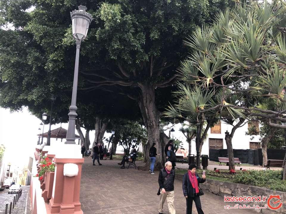 پارک روستای Icod de los vinos