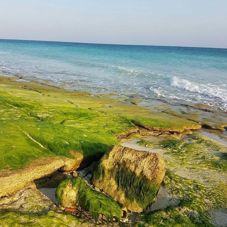 Simorgh Beach (4).jpg
