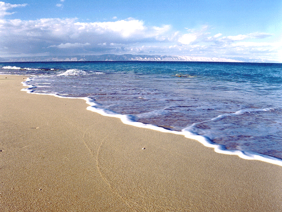 Women's Beach Kish (1).gif