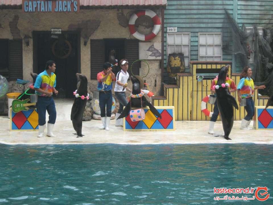 باغ وحش تایلند