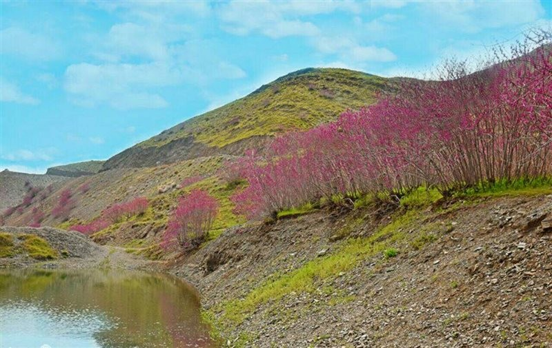Arghavan Valley