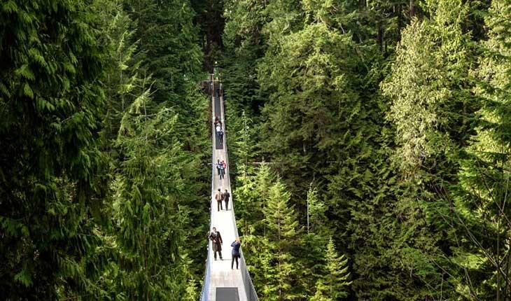 تصاویری از تماشایی ترین مناظر در کانادا 