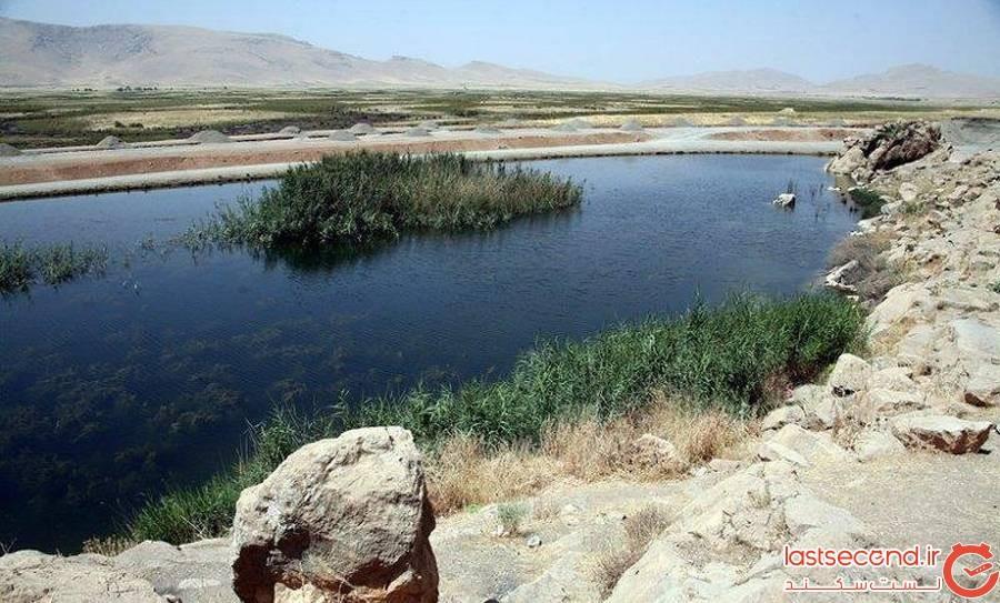 تالاب هشیلان کرمانشاه