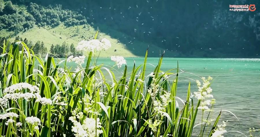 کونیگسی زیباترین و تمیز ترین دریاچه آلمان