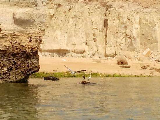 Hengam Island (4).jpg