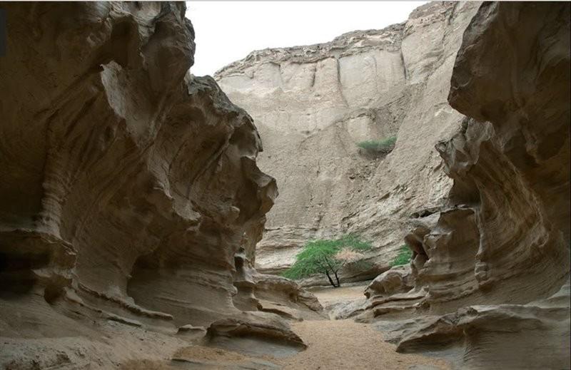 Chahkooh Canyon (1).jpg