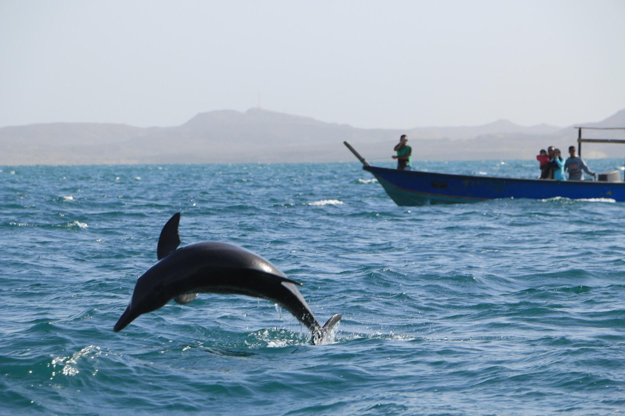 Hengam Island (6).jpg