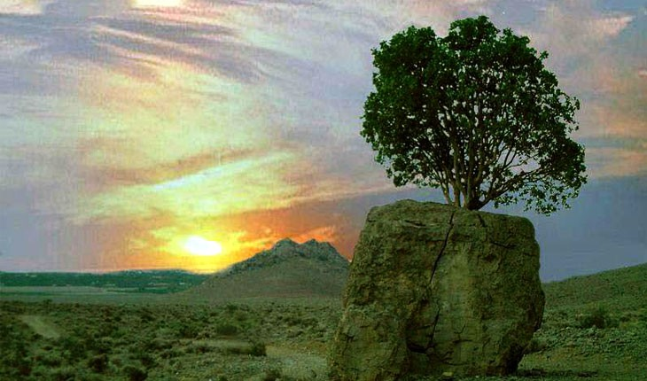 سنگ صبور، مروارید سبز ارسنجان