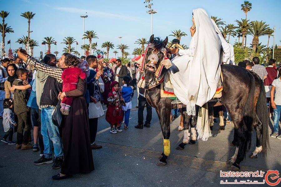 @dailylibya