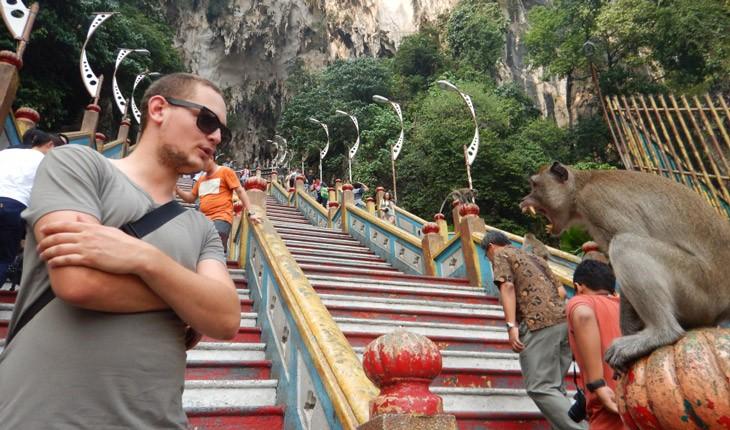 میمونهای کوالالامپور، جاذبه گردشگری خطرناک