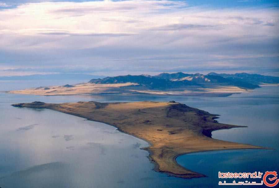 جزیره آنتلوپ، امریکا