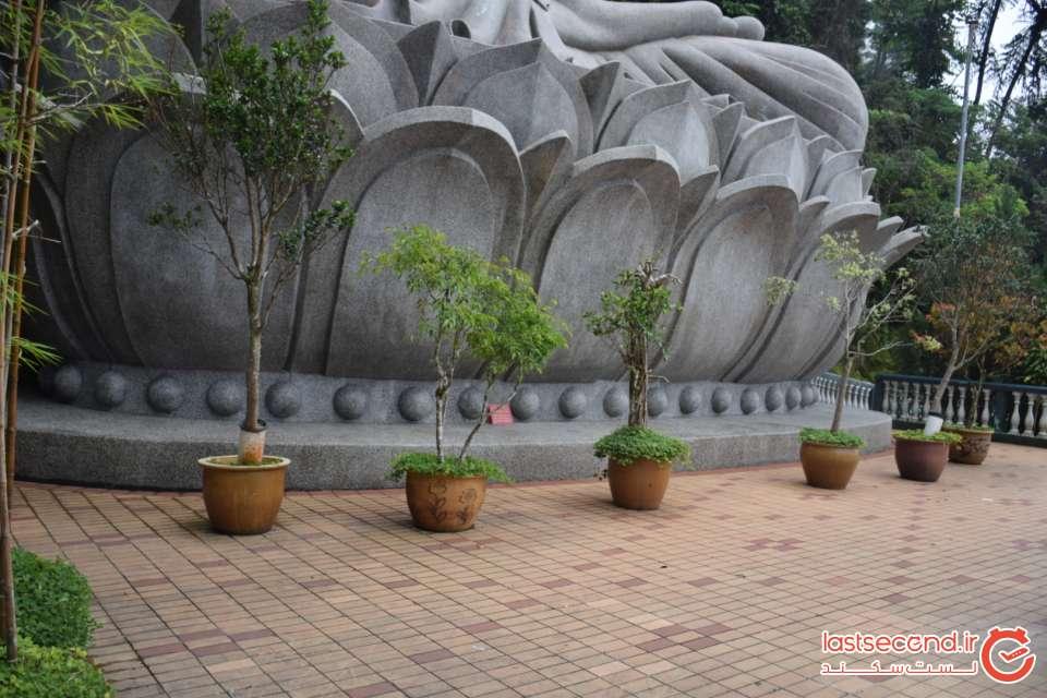 مجسمه بودا در گل نیلوفر در کوآلالامپور
