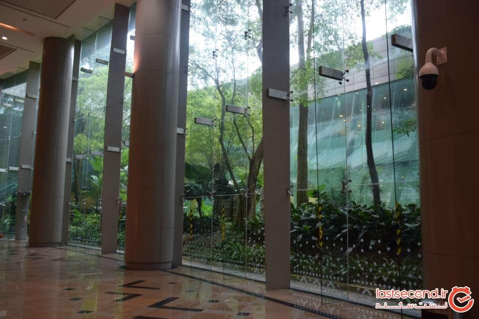 باغ در ساختمان مجلس کوآلالامپور