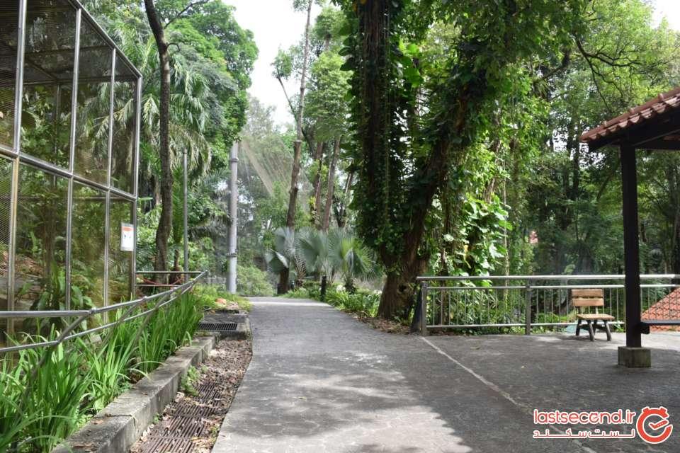 باغ پرندگان کوآلالامپور