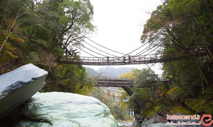 پل Iya Valley Vine در ژاپن