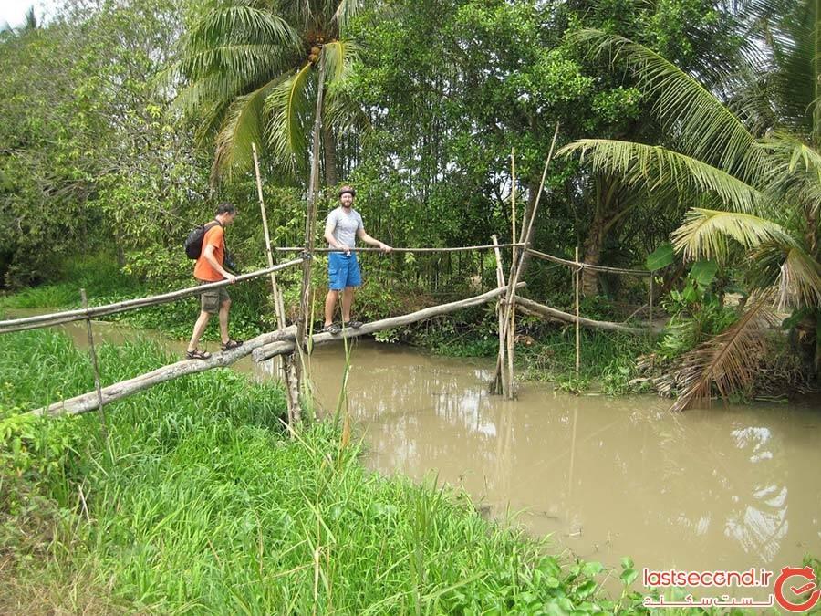 پل میمونها، ویتنام