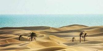 آرزو می کنم برید به دَرَک ( سفرنامه جزیره هرمز تا خلیج گواتر )