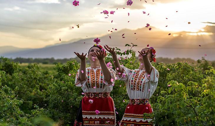 جشنواره برداشت گل محمدی در بلغارستان