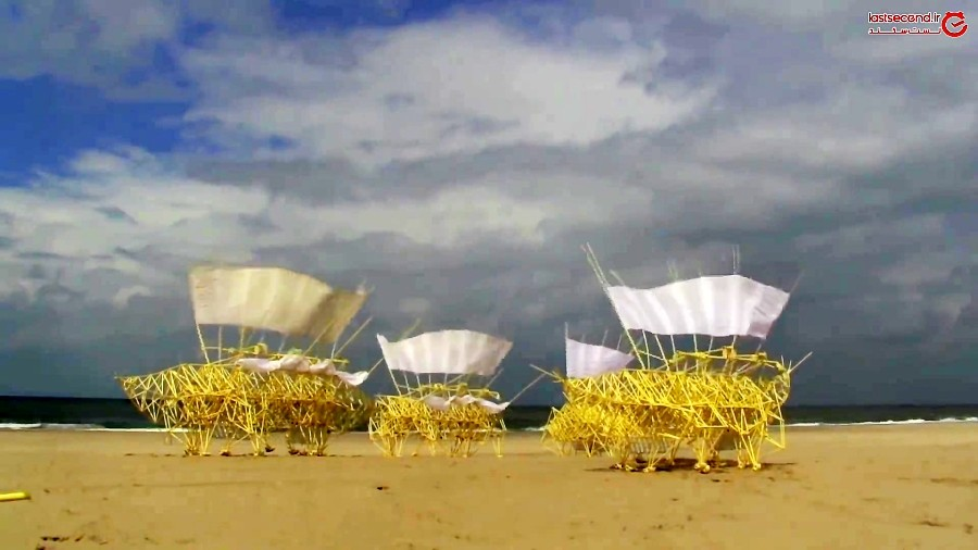 موجوداتی که با وزیدن باد زنده میشوند